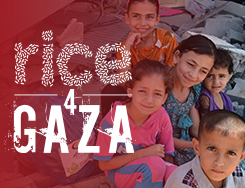EMR - Rice 4 Gaza